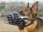 Full Padded Wire Basket Dog Muzzle for German Shepherd