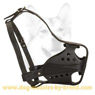 Professional guarding police muzzle