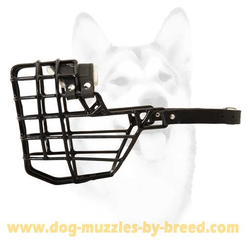 Rubber Covered Metal Winter Muzzle