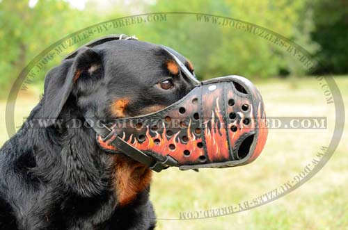 Exclusively designed super strong muzzle