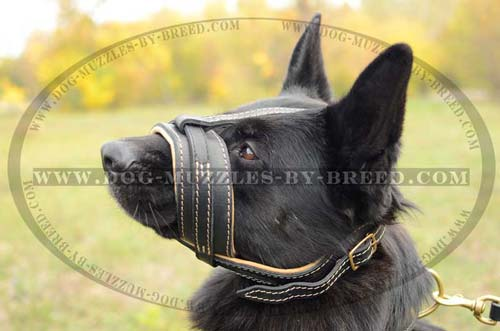 Quick released leather muzzle