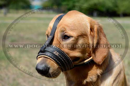 Well-fitting soft leather muzzle