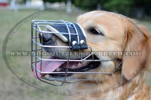 High quality perfectly ventilated muzzle