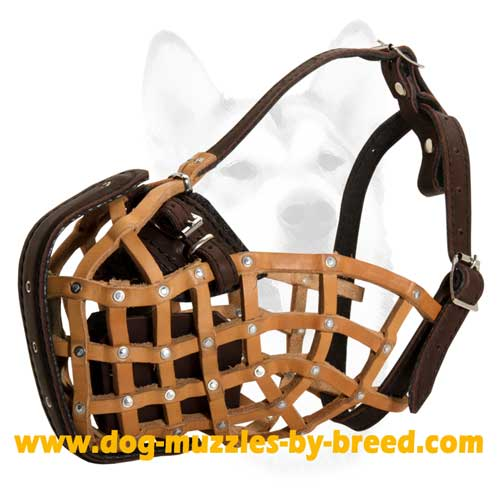 Basket-like leather Dog Muzzle