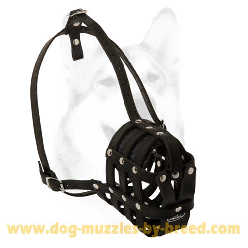 No-rubbing leather dog muzzle