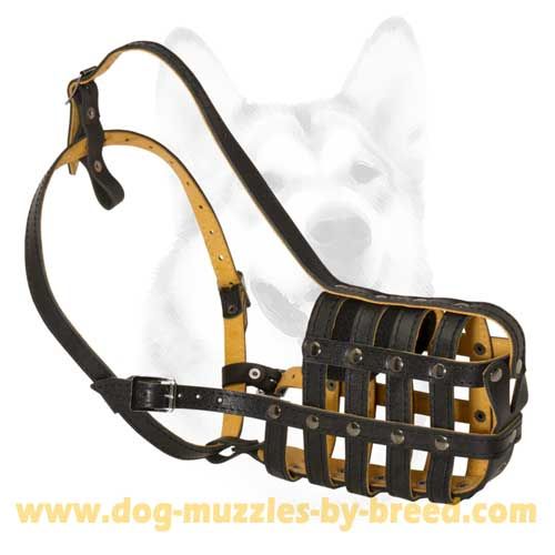 Safe and non-toxic Dog Muzzle