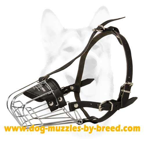 Comfortable Muzzle with Padded nose area
