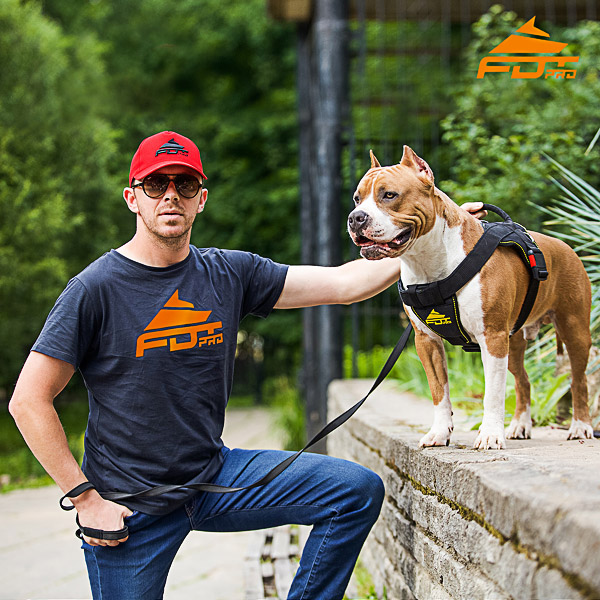 Men T-shirt of Top Quality Cotton with Orange Logo for Dog Trainers